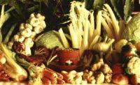 verdure per bagna caoda Canelli
